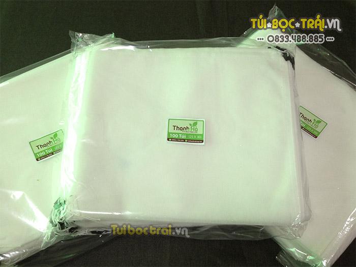 Bịch túi bao Thanh Long chống côn trùng châm chích
