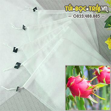 Túi bọc Thanh Long kích thước 25x30