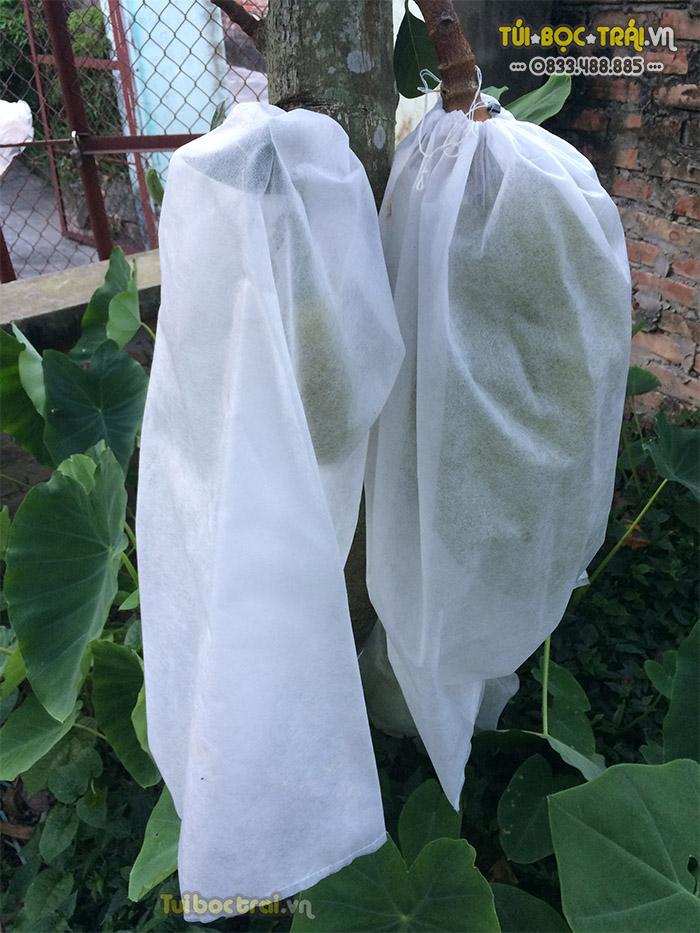 Túi bao trái Mít kích thước 50x70 màu trắng dây rút