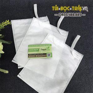 Túi bao ổi Lê Đài Loan
