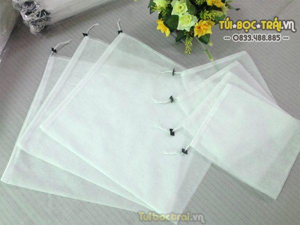 Túi bọc Thanh Long kích thước 20x27