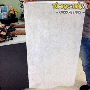 Túi bao buồng Chuối kích thước 60×100