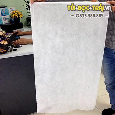 Túi bao buồng Chuối kích thước 60x100