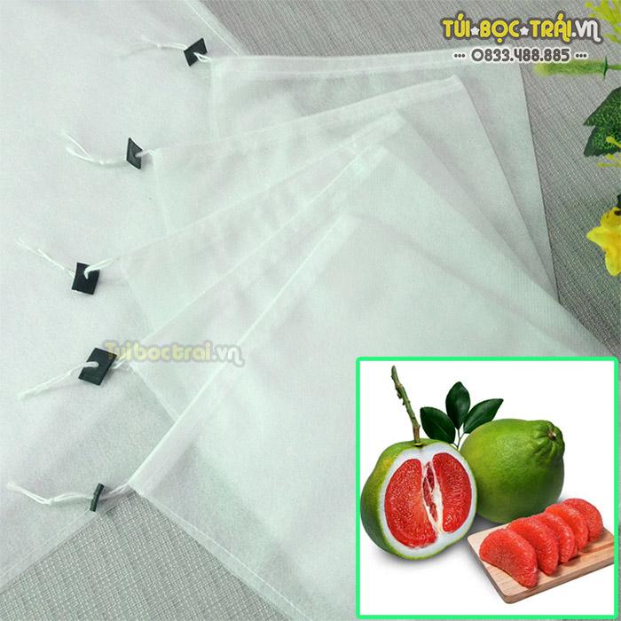 Túi bọc bưởi Thanh Hà giúp trái mã đẹp, mọng nước