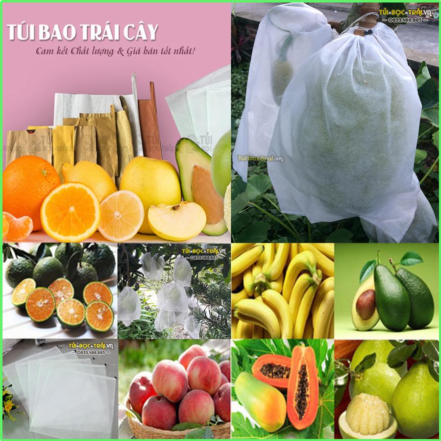 Cty túi bọc trái chuyên cung cấp các loại túi bao trái cây, xốp lưới, túi lưới nhựa cho các nhà vườn