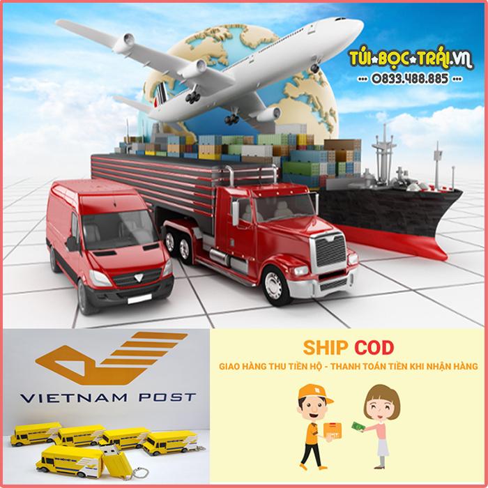 Một số hình thức vận chuyển hàng hóa của công ty